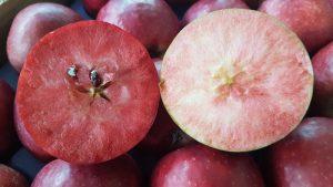 mela-a-polpa-rossa